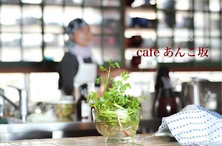 café あんこ坂