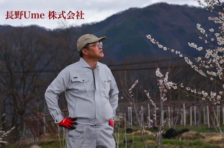 長野県産 南高梅の生産・加工・販売を目指...